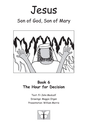Jesus, Son of God, Son of Mary: Book 6: The Hour for Decision